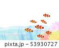 熱帯魚 カクレクマノミ 53930727