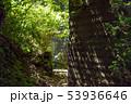 鋸山 登山道 石切り場跡付近 (千葉県) 2019年5月撮影 53936646