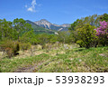 山梨県北杜市 八ヶ岳 美し森山頂から見る赤岳 53938293