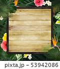 背景-夏-熱帯-トロピカル-モンステラ-プルメリア-ハイビスカス-木製フレーム 53942086