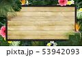 背景-夏-熱帯-トロピカル-モンステラ-プルメリア-ハイビスカス-木製フレーム 53942093