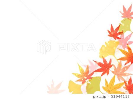 秋の紅葉といちょう 53944112