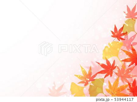 秋の紅葉といちょう 53944117