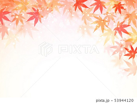 秋の紅葉 53944120