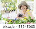 花の写真を撮るシニア女性 53945083