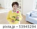 女性 シニア 微笑むの写真 53945294