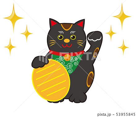 猫 招き猫 小判 黒猫  53955845