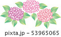 紫陽花 53965065