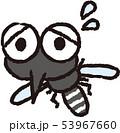 困っている蚊 53967660