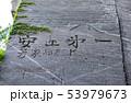 鋸山 石切場跡 (千葉県富津市金谷) 2019年5月撮影 53979673