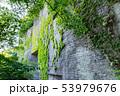 鋸山 石切場跡 (千葉県富津市金谷) 2019年5月撮影 53979676