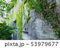 鋸山 石切場跡 (千葉県富津市金谷) 2019年5月撮影 53979677