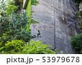 鋸山 石切場跡 (千葉県富津市金谷) 2019年5月撮影 53979678