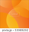 Orange abstract background. Vector illustration 53989202