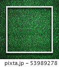 Rectangle square white frame edge on green grass with shadow bac 53989278