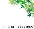 青紅葉 和風 フレーム 53993609
