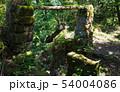 鋸山 石切場跡の遺構 (千葉県) 2019年5月撮影 54004086