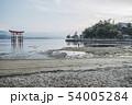 朝の宮島 54005284