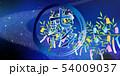 七夕 七夕飾り 天の川のイラスト 54009037
