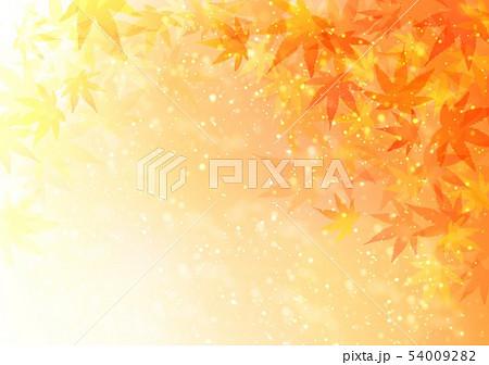 背景秋色キラキラ紅葉 54009282