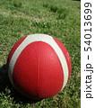 バスケットボールが晴天に 54013699