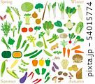 野菜のセット 54015774