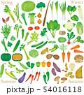 野菜のセットグラデーション 54016118