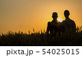 Two young men hugging against the backdrop of the sunset, looking forward to the horizon 54025015
