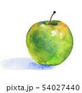 54027440