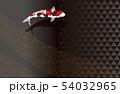 泳ぐ錦鯉と鱗文様. 和風素材. 54032965