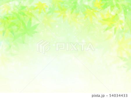黄緑背景キラキラ紅葉 54034433