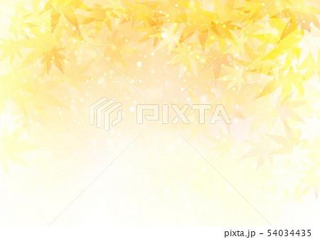 オレンジ背景キラキラ紅葉 54034435
