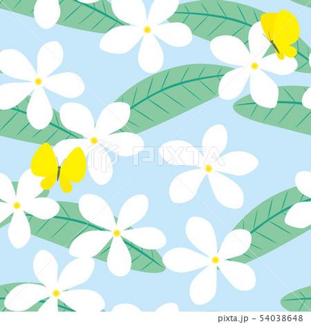 パターン プルメリアと蝶 ブルー 水色 54038648