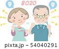 大人の歯磨き (シニア)26  54040291