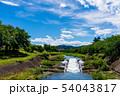 初夏の南浅川 正面高尾山 54043817