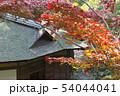 紅葉と日本家屋 54044041