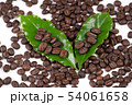 roasted coffee bean with leave on white background 54061658