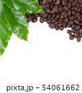 roasted coffee bean with leave on white background 54061662