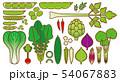 野菜_バリエーション 54067883