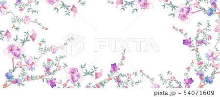 花 フラワー お花 54071609