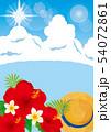 青い海とハイビスカス 54072861