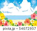 青い海とハイビスカス 54072937