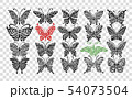 Ornate butterfly collection for your design 54073504