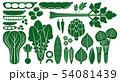 野菜_バリエーション 54081439