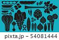 野菜_バリエーション 54081444