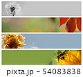 Nature banners for your design 54083838