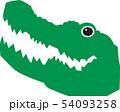 ワニ 動物 爬虫類 54093258
