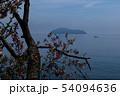 桜越しに竹生島を見る 54094636