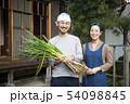農業 54098845