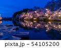 高田城址公園観桜会の夜桜 54105200